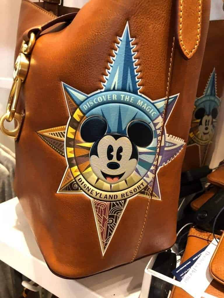 Disneyland Passport Leather