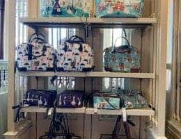 Disney Dooney & Bourke Bags at Disney World - Feb 2019
