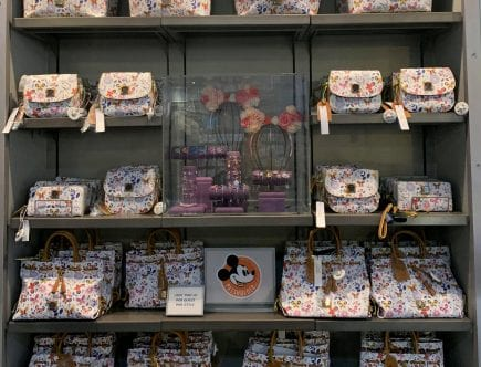 Disney Dooney & Bourke Bags at Disney World - March 2019