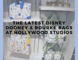 Pin me - The Latest Disney Dooney and Bourke Bags at Hollywood Studios